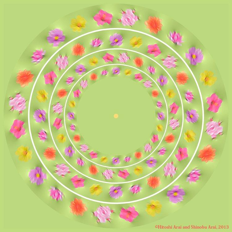 Flower garden 004