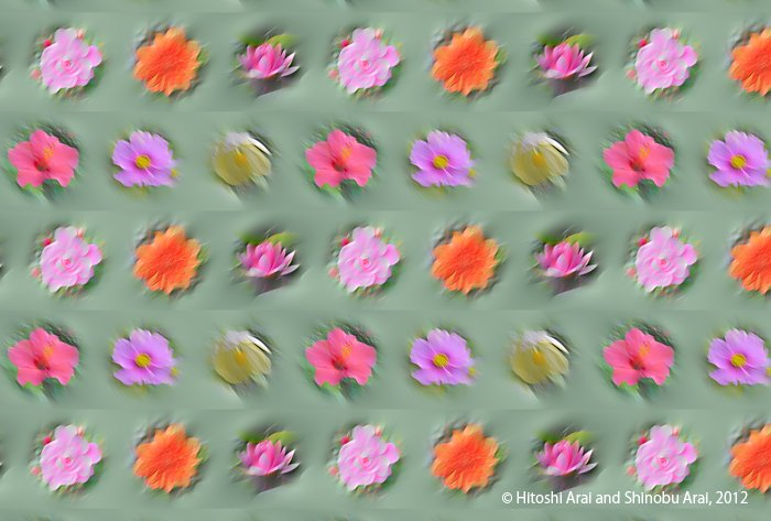 Flower illusion
